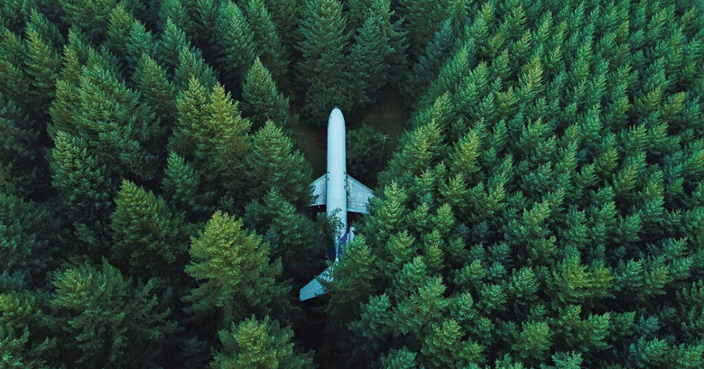 photo of airplane in a forest